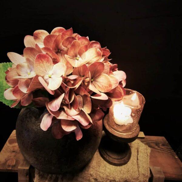 Kunst hortensia tak